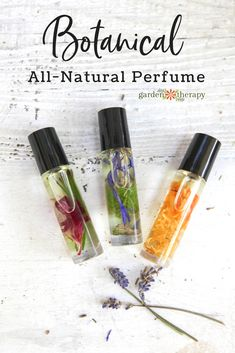 Botanical all-natural perfume with flower petals. Roller bottles are popular… DIY Botanical all-natural perfume with flower petals. Roller bottles are popular. -DIY Botanical all-natural perfume with flower petals. Roller bottles are popular. Essential Oil Perfume, Perfume Oils, Perfume Bottles, Diy Fragrance Oil Perfume, Essential Oil Spray, Making Essential Oils, Parfum Flower, Flower Perfume, Natural Beauty Products