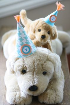 party-dogs.jpg 450×675 pixels