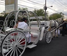 07a1c05c3cc Home of the Cinderella Princess Carriages and Famous White Horses for  Weddings