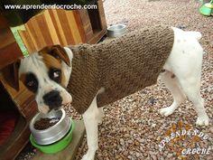 Roupinha de Crochê Cão Boxer - Moda Pet - Aprendendo Croche