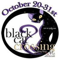 Black Cat Crossing At Seams To Be Sew Today.. |