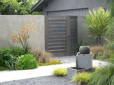 Cotton Jones Retreat aeoniums fern flax fountain grasses gravel horizontal cedar fence and gate kangaroo paws leptosperum petersonii tree smooth wall stucco walls Cordyline 'Torbay Dazzler'