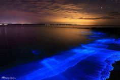 Bioluminescence from Plankton Washes onto the Beach in Jervis Bay Australia