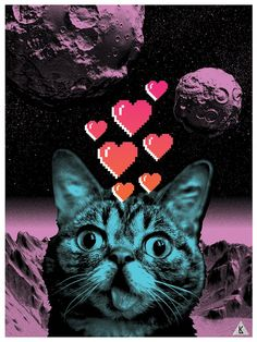 More space cat.
