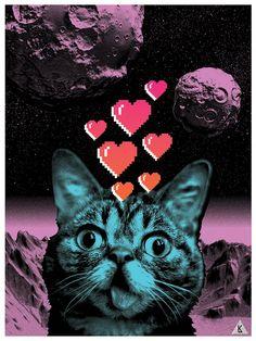 More space cat.