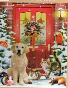 Jigsaw Puzzle, 500 , Christmas Welcome, Dog, Cat, rabbit, hamster at front door…