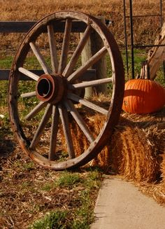 .Fall haybale pumpkins and wagon wheel...perfect