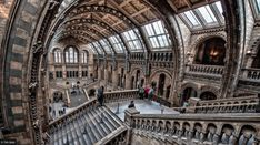 """/ Photo """"Natural History Museum, London"""" by Tim Grist Tadao Ando, V & A Museum, Maritime Museum, Carlo Scarpa, London Docklands, Museum Of Childhood, Italian Paintings, London Attractions, Free Museums"""
