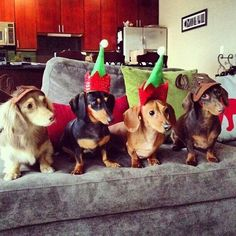 We're NOT tired...We're waiting up for Santa!