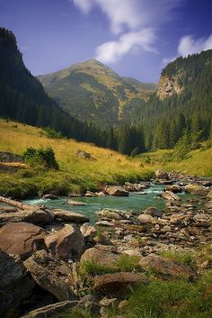 Into the Wild, Fagaras Mountains, Romania (by Maddy C.).  That water is so clear, just beautiful.