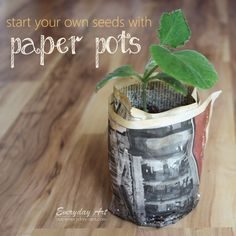 Everyday Art: Make your own paper pots for starting seeds