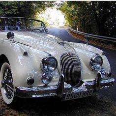One of the most elegant car ever produced, the Jaguar convertible Eines der elegantesten Autos aller Zeiten, das Jaguar Cabrio # Jahre Classy Cars, Sexy Cars, Hot Cars, Vintage Cars, Antique Cars, Vintage Style, Vintage Sports Cars, Automobile, Dream Garage