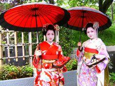 Geisha of Kyoto Kyoto, Sari, Culture, Japan, Beautiful, Beauty, Planet Earth, Umbrellas, Diversity