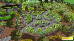 permaculture garden | in permaculture garden design emphasizes patterns of landscape ... my favorite, but use more vegetables amongst the florals