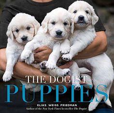 The Dogist Puppies - https://www.petsupplyliquidators.com/the-dogist-puppies/