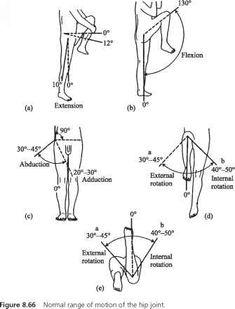 Shoulder Range Of Motion Chart Joint <b>rom chart</b> - head circumference - guws medical