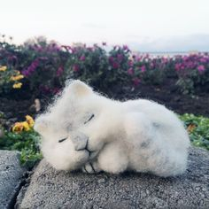 by YourGattino on Etsy Sleeping Kitten, Stuffed Animal Cat, White Kittens, Small Cat, Cat Toys, Handmade Toys, Cats, Animals, Vintage