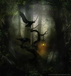 Halloween-Haunted Forest