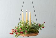DIY How-To: Hanging Tray Planter (gorgeous copper trays are very inexpensive at terrain ~ I bought one and love it!)        terrain