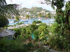 They say St. Vincent in the Caribbean is wonderful...