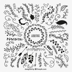 Sketchy leaves collection Free Vector