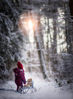 winter sun by Iwona Podlasińska Winter Family Photography, Winter Family Photos, Snow Photography, Christmas Photography, Winter Pictures, Children Photography, Levitation Photography, Exposure Photography, Abstract Photography