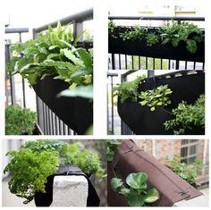 """Dual Layer 36""""x13"""" Green Fabric Living Diy Vertical Garden Wall Growing Bags For Home Garden: Amazon.ca: Patio, Lawn & Garden"""