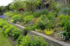 danger garden: a fun garden blog