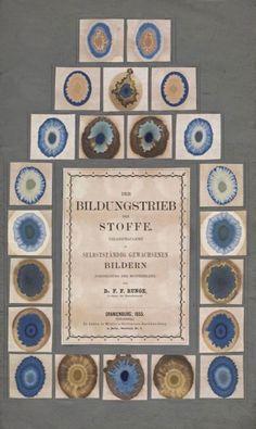 Samples of chemical dyes. Der Bildungstrieb der Stoffe : veranschaulicht in selbstständig gewachsenen Bildern. 1855.