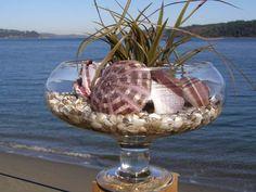 BEACH DECOR, seashells in glass footed bowl, purple urchin, sea grasses~~~