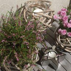 """""""Store, lekre kurvlykter, som jeg her har kubbelys i den ene og Røsslyng i den andre. Kan brukes til potteplanter, som vase og lykt!  kun 120,- hos www.buadekor.no  NB! Nå sender vi til Sverige også. @buadekor.no #buadekor #nettbutikk #interiør #nordiskehjem #tipstilhjemmet #kkmagazine #kk_living #vakrehjemoginterior #vakrehjem #kkliving #kk #interor4you1 #vaser"""" Photo taken by @buadekor.no on Instagram, pinned via the InstaPin iOS App! http://www.instapinapp.com (08/30/2015)"""