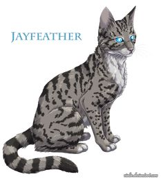 Jayfeather by Vialir on DeviantArt