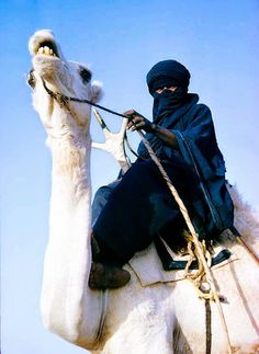 Tuareg man of the noble Kel Rela tribe near the Sahara's well of In Abbangarit in Niger. The Tuareg saddle their camels in front of the humps. This allows them to rest naked feet on their camels' necks. To make camels kneel down they only need to apply repeated downward pressure on the camels' necks.