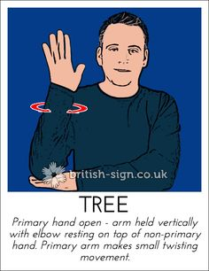 Today's British Sign Language sign is: TREE - learn more at… English Sign Language, Sign Language Basics, Sign Language For Kids, Sign Language Phrases, Sign Language Alphabet, Sign Language Interpreter, Learn Sign Language, British Sign Language, Language Lessons