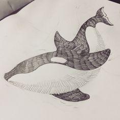 #killerwhale #whale #tattoo #범고래 #고래 #타투 #타투도안
