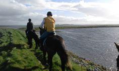 Small Island, Trekking, Horses, Website, Animals, Animaux, Horse, Animal, Animales