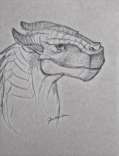 Pin by alpha coven on wings of fire in 2019 wings of fire dragons. Amazing Drawings, Art Drawings Sketches Simple, Animal Sketches, Drawing Ideas, Wings Of Fire Dragons, Cool Dragons, Dragon Sketch, Dragon Drawings, Fire Drawing