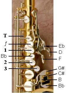 Fingering Scheme For Saxophone Soprano Saxophone Fingering Chart Bass Saxophone, Baritone Sax, Soprano Saxophone, Alto Saxophone Fingering Chart, Reading Music, School Stuff, Keys, Teacher, Band