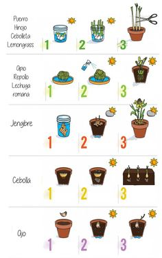 Hydroponic Growing Systems – Info For Your Garden Hydroponic Growing, Hydroponic Gardening, Growing Plants, Hydroponics, Container Gardening, Eco Garden, Market Garden, Natural Garden, Edible Garden