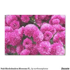 Pink Rhododendron Blossoms Floral Tissue Paper
