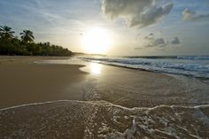 A Beautiful Sunset on Playa Dorada beach in Puerto Plata. Most Beautiful Beaches, Beautiful Sunset, Beautiful Places, Punta Cana Beach, Expo Milano 2015, Free Travel, Dominican Republic, Beach Trip, Dream Vacations
