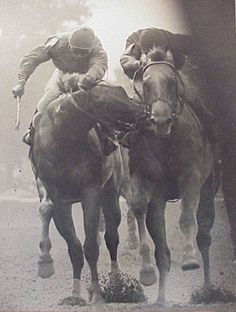 """The Savage"", one of the most moving equine photos ever taken. It was 1980, the stretch run of the Tremont Stakes. The outside horse, Great Prospector, realized that he could not outrun Golden Derby, and savages him in a desperate attempt to win. This is the famous ECLIPSE AWARD WINNING PHOTO taken by the noted New York track photographer Bob Coglianese."