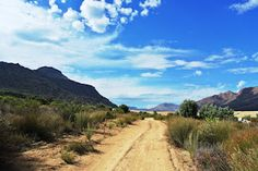 Love Camping,suikerbossie is just beautiful. al the clear skies. Clear Sky, South Africa, Beautiful Places, Country Roads, Camping, Cape, Travel, Outdoor, Spaces