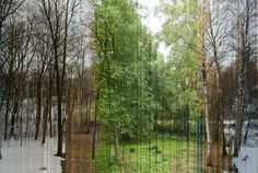 one photo of the same spot taken 365 times, once a day and compiled into one image. Simply awesome.