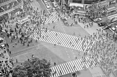 A few seconds of Shibuya Scramble Crossing Tokyo