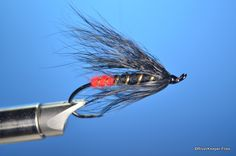 This week's Throw Back Thursday Fly is the Black Gordon, a steelhead fly developed by Clarence Gordon. Fly Tying Patterns, Fish Patterns, Going Fishing, Fly Fishing, Hair Wings, Steelhead Flies, Salmon Flies, Trout, Thursday