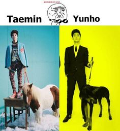 Taemin and Yunho... What the.....