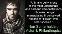 """Ian Somerhalder Joins Ricky Gervais and Other Celebs to Campaign Against Attending Animal Performances. """"No Voice No Choice,"""" a campaign designed to end the use of animals in entertainment."""