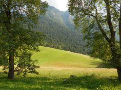 #mountain #Italy #Orobie #ValSeriana