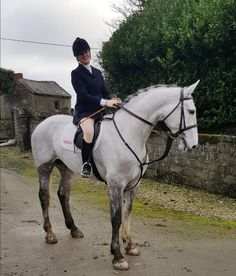 Handsome Irish hunter Conor! . . . #glandoranislandhunt #hunting #hunter #horse #greyhorse #weekend #me #keephunting #huntinginireland #countryside #ireland #horseriding #workout #fit #fitness #fun #countrylife #equine #equestrian #equestrianstyle #huntcoat #jodhpurs #style #lookbook #ridingboots #gold #stockpin #smile #ireland #winter
